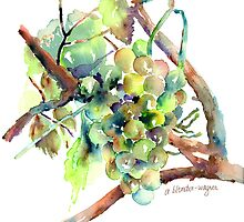 Wine Grapes by arline wagner