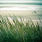 Autumn Low Tide by The Pixel Gallery ©