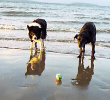Indy and Shela at the beach by Michael Haslam