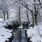 My Secret Place - Stamford Park, Lancashire by dawnandchris