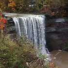 Ball's Falls in fall by Matte Downey