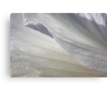 Exquisite lightness Canvas Print