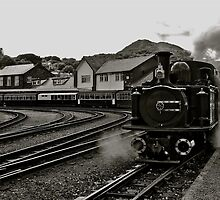 Welsh Steam Train by lendale