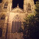 Minster by Night by neon-gobi