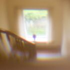 Through the peephole by Gabor Pozsgai