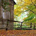 A Pioneer Farm in Fall... by Larry Llewellyn