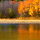Autumn at Sawmill Lake by Tara  Turner