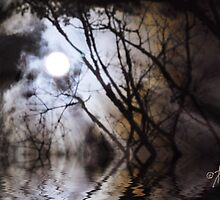 Misty Moonlight by Pat Moore