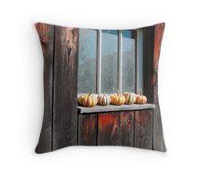 The Barn Window Throw Pillow