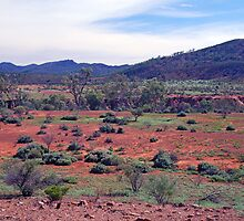 The Aroona Valley, Flinders Ranges, South Australia by Adrian Paul
