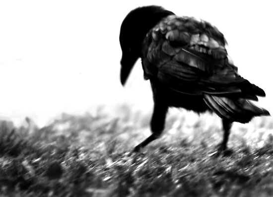Nevermore by blueeyesjus