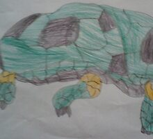 Tortoise by ryan47901