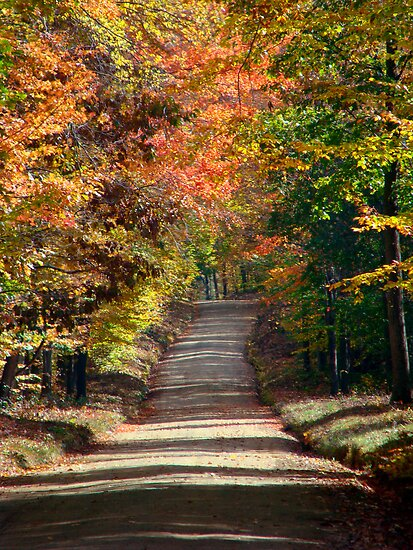scenic October drive 2 by vigor