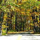 Entrance to Devils Lake State Park by ZombieEnnui