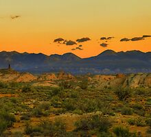 La Sal Mountains / Arches National Park by GaryGlass