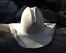 Cowboy Hat by pmreed