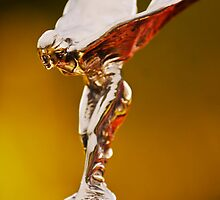 "1928 Rolls-Royce ""Spirit of Ecstasy"" Hood Ornament by Jill Reger"