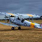 Tiger Moth  by Ian Creek