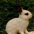 Little Irish Bunny by leystan