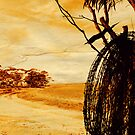 &quot;barbed wire&quot;    outback south australia by rina  thompson