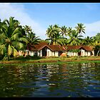 Somewhere in Kerala backwaters by Rishabh Sharma