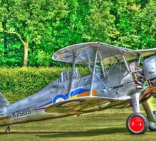Gloster Gladiator 1938 by Chris Thaxter