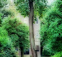 Severndroog Castle Through The Trees by Karen Martin IPA