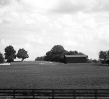 Barn sitting low in b&w by loriwellsphoto