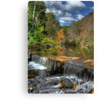 Overflowing with Beauty Canvas Print