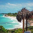 Tropical Temptations by Carol Barona