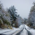 1st Snow Oct 15,2010 Washington N.H. USA by jeanlphotos