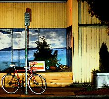 Red Bike at Night by Zolton