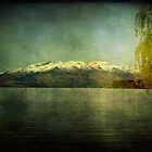 Lake Wanaka by Sue Wickham