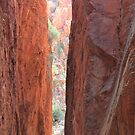 Standley Chasm 1 by Cheryl Parkes
