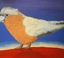 THE SLIGHTY GRUMPY GALAH (AUSTRALIA) by RoseLangford