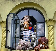 The Great Teddy Bear Escape ( 2 ) by Larry Lingard/Davis