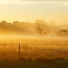 Sunrise fog at Wakarusa by agenttomcat