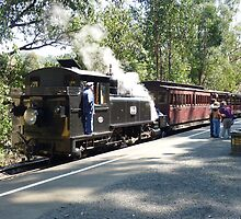Puffing Billy # 1 by Virginia McGowan