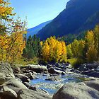 Entiat Fall Shoot I by Debbie Roelle