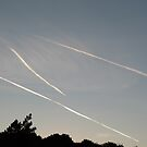 Contrails In The Sky (6905) by Tony Payne