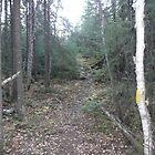 Little Side Trail by Brady Flageole