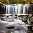 Rickett's Glen - Onedia Falls by Mark Van Scyoc