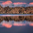 3 Pink X 2 by Bob Larson