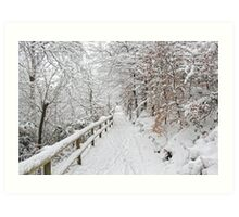 The winter lane Art Print