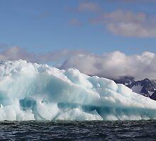 Iceberg in the sun by John Dalkin