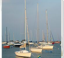 Lake Front Harbor, Chicago by lynell