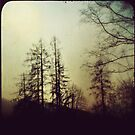 Silhouettes by Mojca Savicki