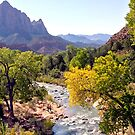 Zion National Park, USA by RichardKlos