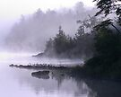 Misty Morning at Kennebec Lake, Ontario by Debbie Pinard