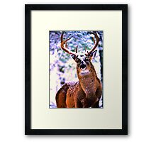 The Touch of Providence 4 Framed Print